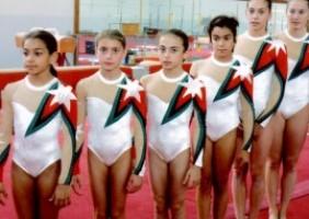 Gymnastics 01