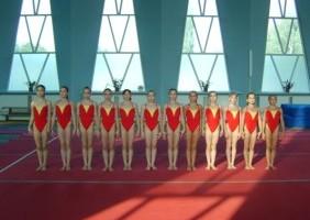 Gimnastica Artistica 10